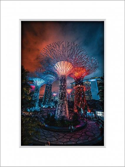 Gardens by the Bay 4