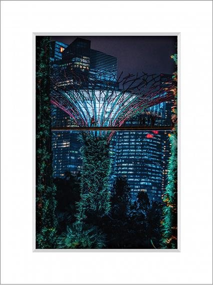 Gardens By The Bay 7